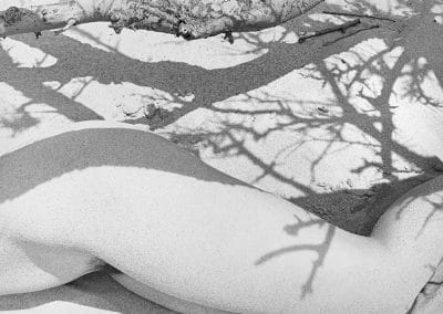 Figure Sand and Branch